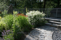 gardening site of the month